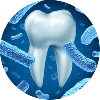 Oral Health Treatment in Red Deer